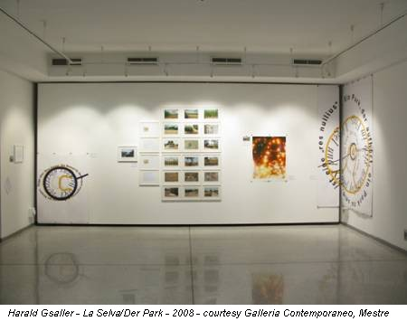 Harald Gsaller - La Selva/Der Park - 2008 - courtesy Galleria Contemporaneo, Mestre