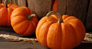 dieta dyniowa na jesień