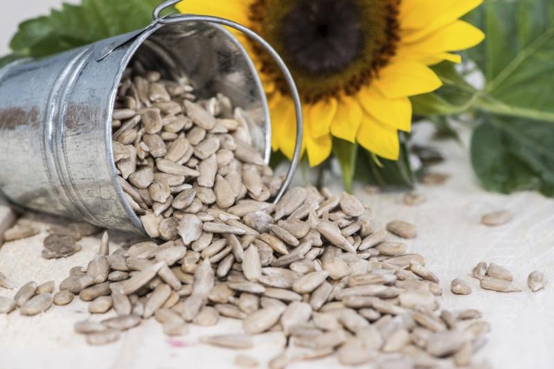 5 korzyści dla zdrowia z nasion słonecznika