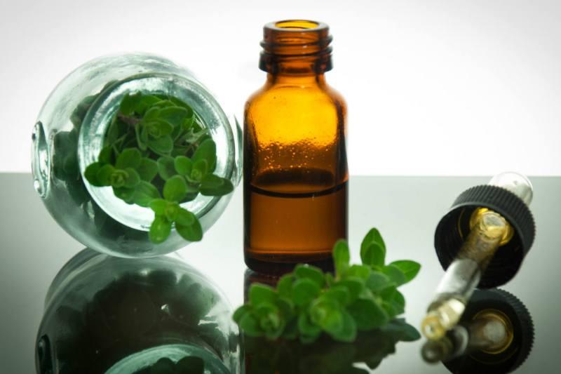 Olejek z oregano zamiast antybiotyku