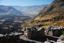 Colca Canyon 3