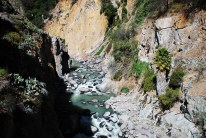 Colca Canyon 8