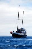 Segelboot (Turist Class zum Vergleich)