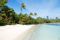Palmen, Strand, Meer...