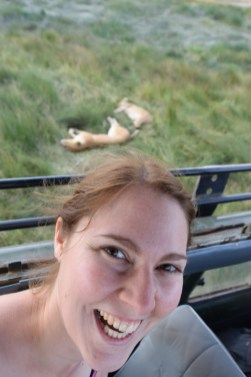 Lions Close Ups
