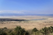 Ngorogoro Crater (Afternoon)