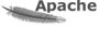 Adult web hosting