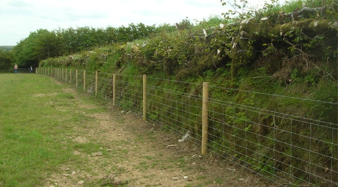 FREE HEDGELAYING COURSES