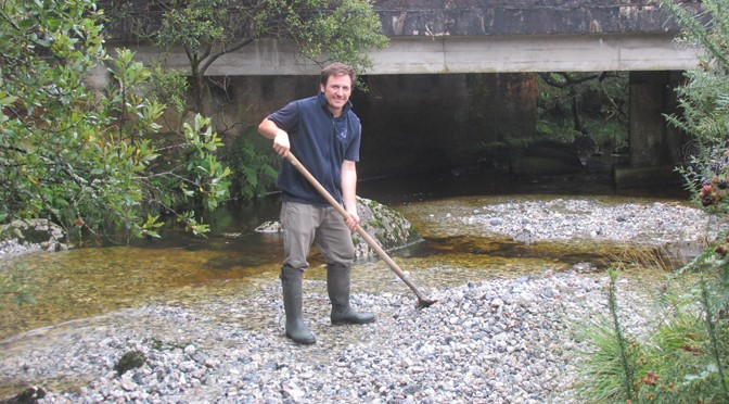 SOUTH WEST SALMON GET NEW SPAWNING GROUNDS