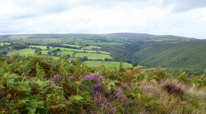NEW POETRY COMPETITION LAUNCHED BY EXMOOR SOCIETY