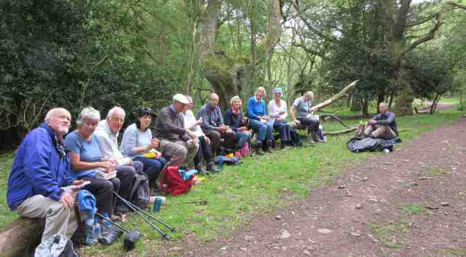 WEEKEND OF SUMMER WALKING PLANNED FOR QUANTOCK HILLS NOW OPEN FOR BOOKINGS