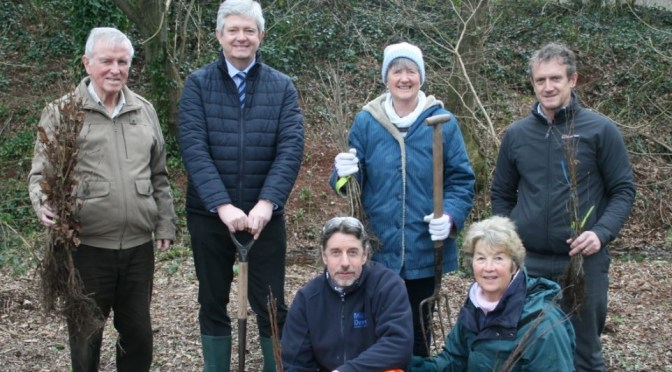 ROTARY CLUB GIFTS 50 TREES FOR TIVERTON