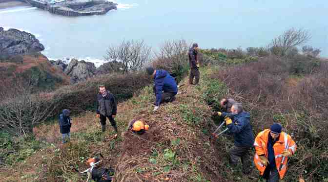 HILLSBOROUGH NATURE RESERVE ACTION DAY: CAN YOU HELP?