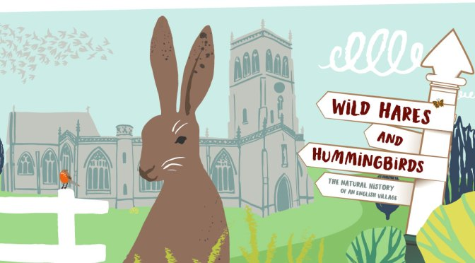 WILD HARES AND HUMMINGBIRDS AT THE MUSEUM OF SOMERSET