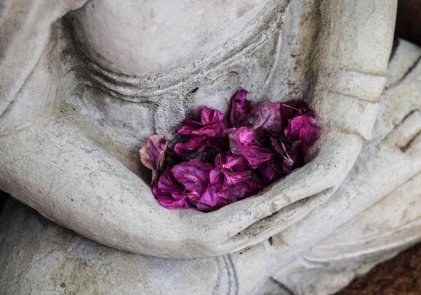 comment creer un jardin mineral et zen