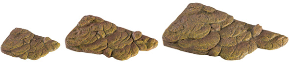 Turtle Banks