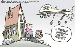 domestic-drone-cartoon