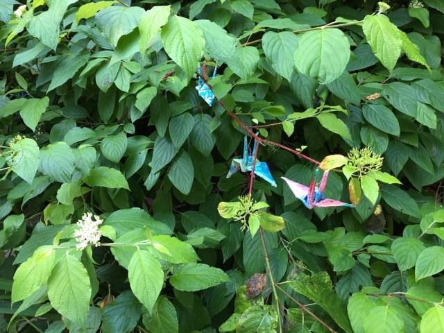 paper-hangings