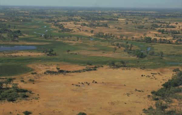 botswana-post-picsokovango-delta-view