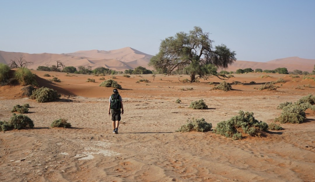 best-pics-namibiadsc09321