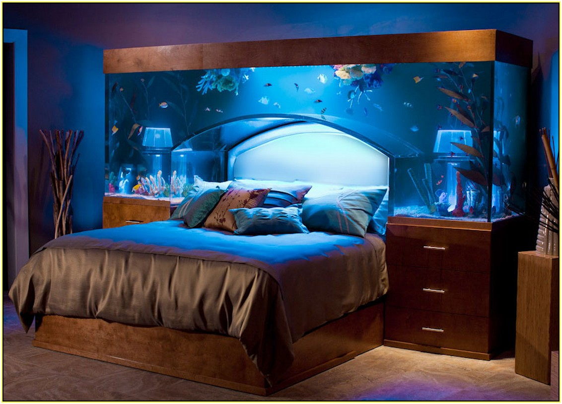 picture of amazing fish tank