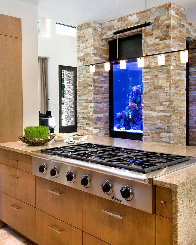 picture of fish tank in the kitchen