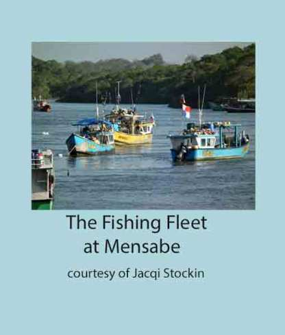 Fishing Fleet at Mensabe
