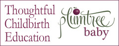 Plumtree Baby Curriculum