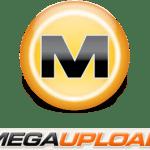 Une petite infographie pour Mr Megaupload