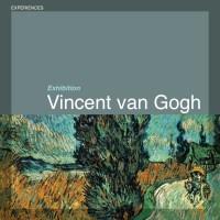 Vincent van Gogh - Il Sentiero di notte in Provenza