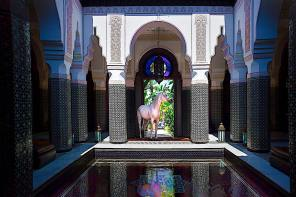 Equestrian Paradise at the Selman Marrakech