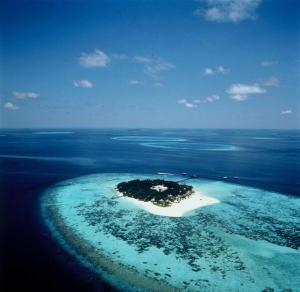 Tha Maldives - one huge coral reef...