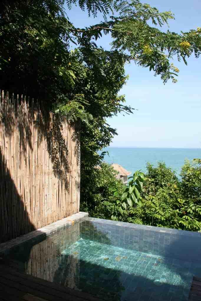 Private pool in Jungle villa