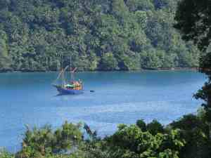 Tiger Blue in the Banda Islands