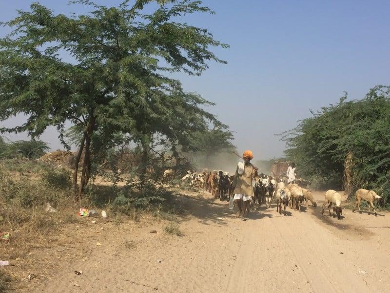 Indian traffic jam