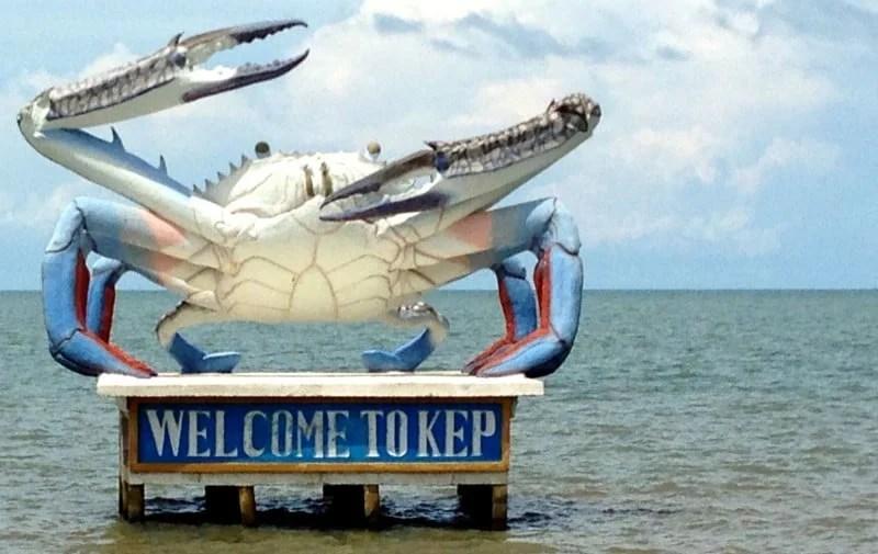 jan-crab