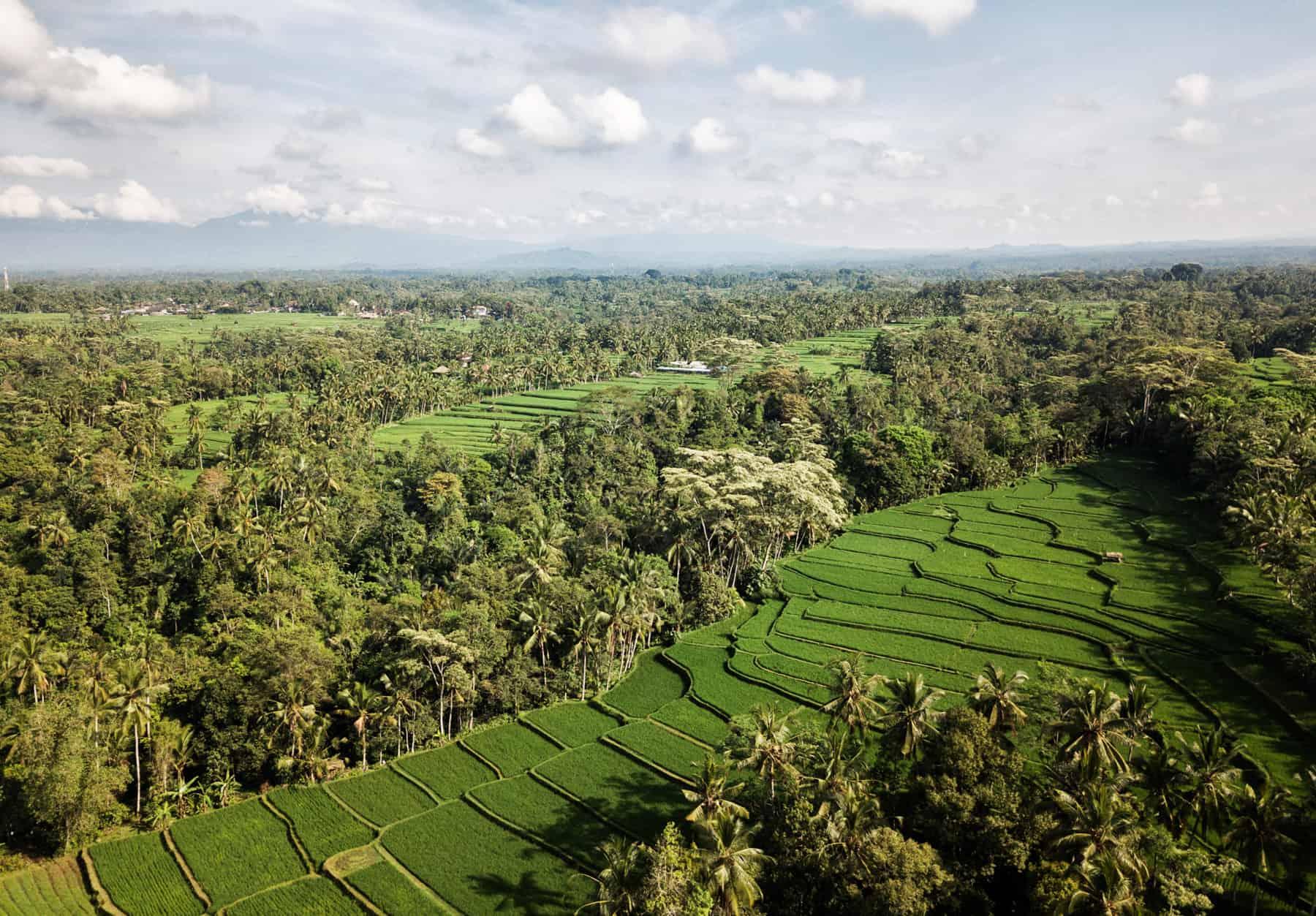 Green travel in Cambodia