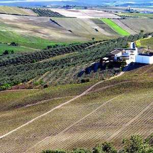 Vista del Cerro de San Juan en Montilla