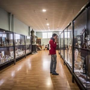 Museo del aguardiente anisado en Rute