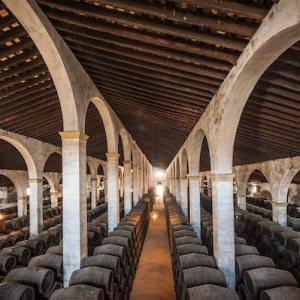 Cata de vinos en Jerez de la Frontera