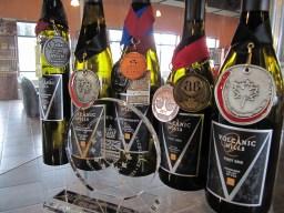 v h wines