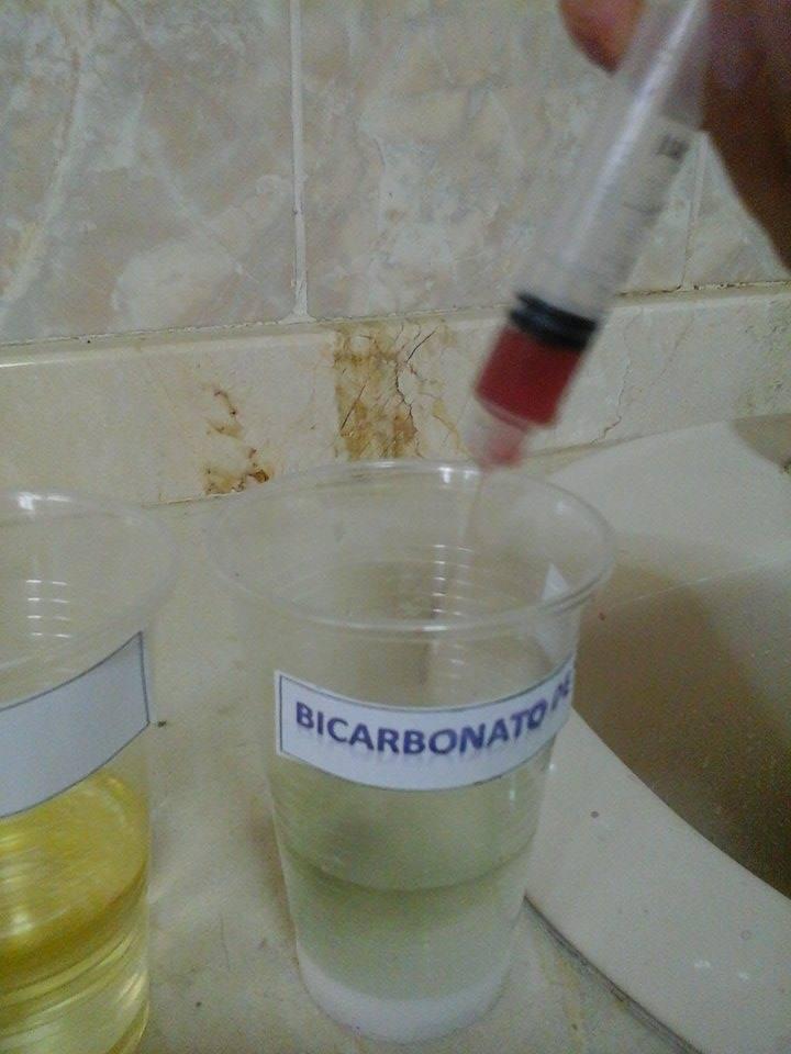 Utilizacin de los pigmentos naturales