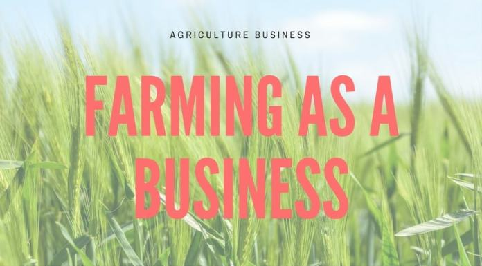farming business india