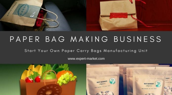 paper carry bags business plan