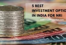business ideas for NRI