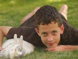 Kaninchenstall Herkunft Kaninchen