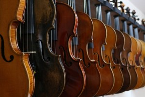 Geigen unterschiedliche Arten und Holz
