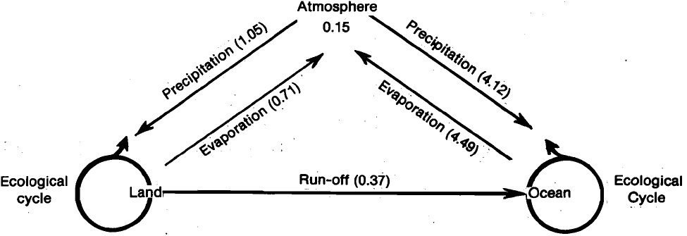 Water cycle-hydrological cycle, Biology