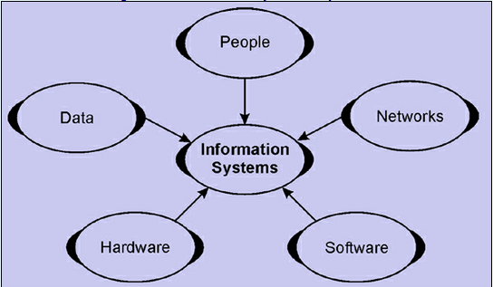 components of information systems Information systems hardware is the part of an information system you can touch – the physical components of the technology computers, keyboards, disk drives, ipads, and flash drives are all examples of information systems hardware.