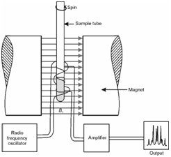 Instrumentation For NMR Spectroscopy, NMS Spectroscopy